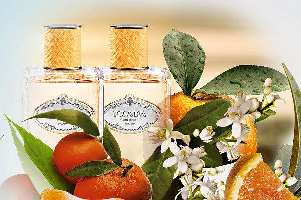 как выбрать парфюм на лето