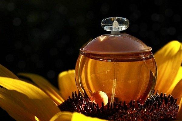 кашарель ноа описание аромата